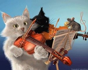 TWO chats VIOLIN WITH LIL souris
