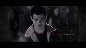 Taylor Lautner/Jacob Black