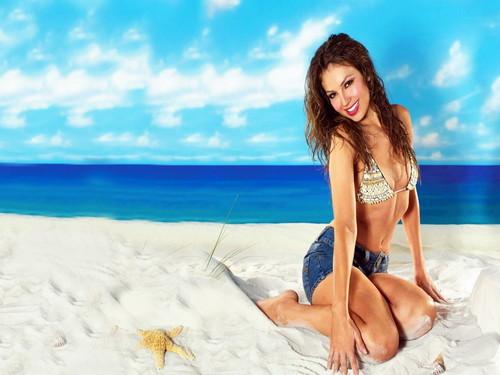 Thalia wallpaper with a bikini entitled Thalia