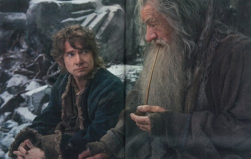 द हॉबिट वॉलपेपर entitled The Hobbit: The Battle Of The Five Armies - Official Movie Guide