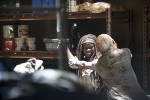 The Walking Dead - Episode 5.02 - Strangers