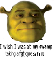 This is my swamp