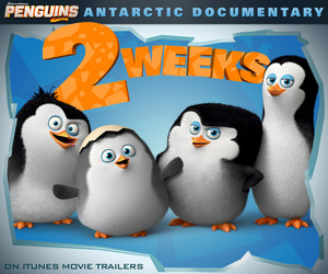"Two-Weeks Until ""Antarctic Documentary"" scene release Ad"