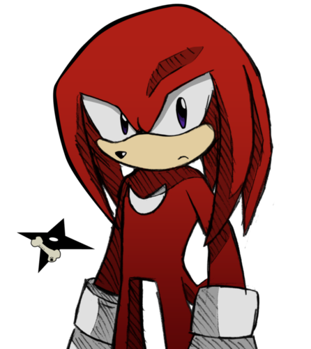 Knuckles the Echidna wallpaper with anime titled What is it??