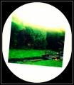 garden art card