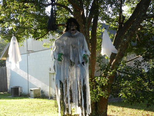 Halloween wallpaper called ghoul hanging from tree