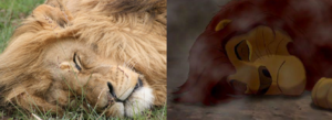 mufasa's lifeless body