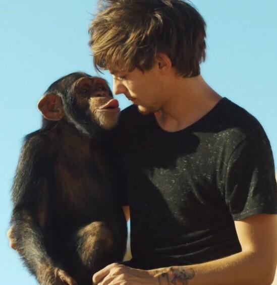 Louis and Eli :**