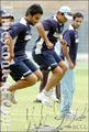 picture percfect - suresh-raina photo