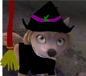 witch kate