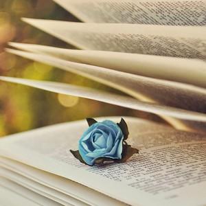 ★ livres ★