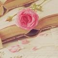 ★ buku ★