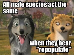 """""""Repopulate"""""""