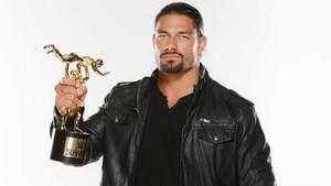2014 WWE Slammy Awards