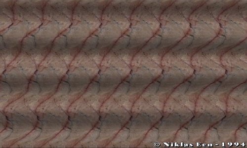 Illusions wallpaper containing a chainlink fence and an atlantic herring entitled 3D Magic Eye