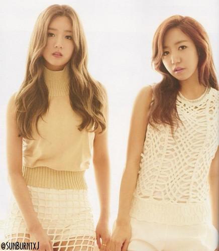 Korea Girls Group A Pink wallpaper called 5th mini album - Pink Luv
