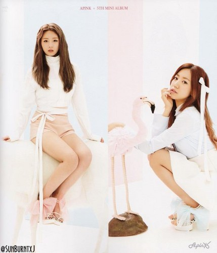 Korea Girls Group A Pink wallpaper containing a portrait titled 5th mini album - Pink Luv