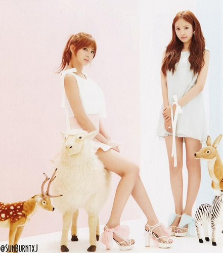 Korea Girls Group A Pink wallpaper probably containing a portrait called 5th mini album - Pink Luv