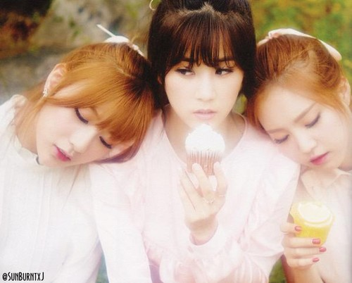 Korea Girls Group A Pink wallpaper entitled 5th mini album - Pink Luv