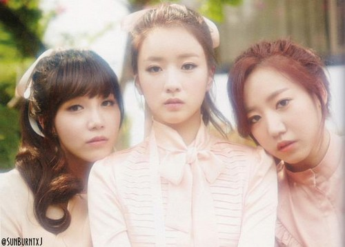 Korea Girls Group A Pink wallpaper with a portrait entitled 5th mini album - Pink Luv