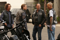 7x12 - Red Rose - Tig, Jax, Chibs and Happy