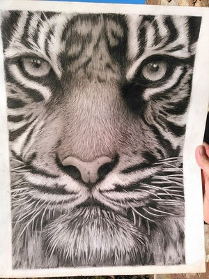 A pencil drawing. It took about 40 hours to complete.