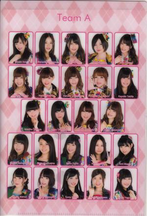 AKB48 Team A 2015 Calendar