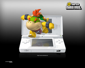 Bowser Jr. and DS Background