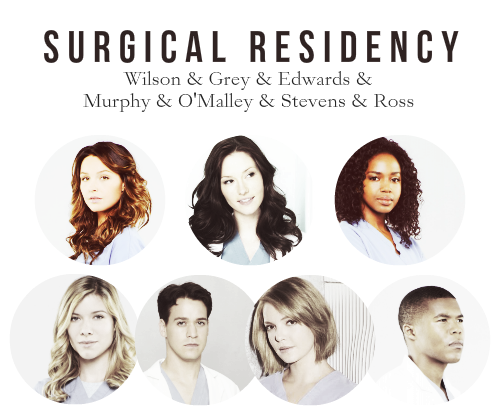 Grey's Anatomy wallpaper containing a portrait entitled Doctors of Seattle Grace Mercy West / Grey Sloan Memorial   specialities