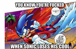 Don't piss the hedgehog off