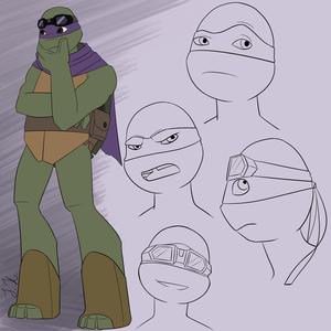 Donatello SAINW