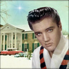Elvis Presley photo containing a portrait called Elvis Presley