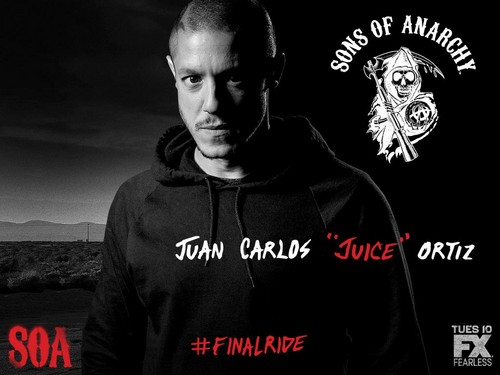 Sons Of Anarchy wallpaper containing a sweatshirt entitled Final Ride - Juice