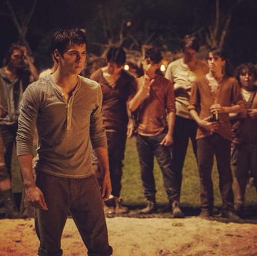 The Maze Runner fond d'écran containing a concert titled Gally Vs Thomas