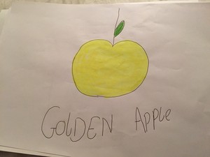 Golden apfel, apple - Stampylongnose
