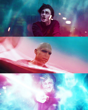 Harry and Lord Voldemort