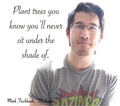 Inspirational Markiplier Quote