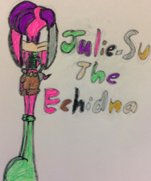 Julie-Su the Echidna