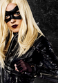 Laurel-Black Canary