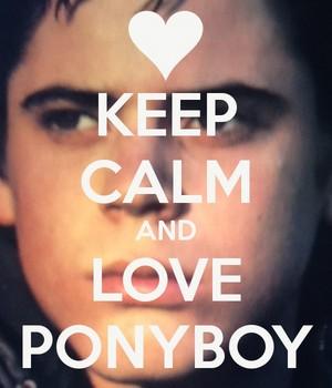 사랑 Ponyboy Curtis