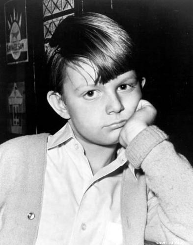 celebridades que murieron jóvenes fondo de pantalla entitled Matthew Adam Garber (25 March 1956 – 13 June 1977)