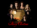 Merry Cullen Christmas - twilight-series photo