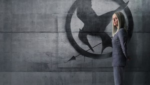 Mockingjay Part 1 پیپر وال