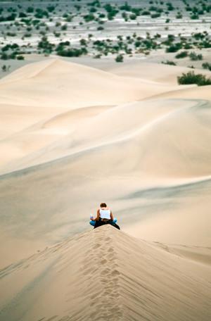 Resting on Dune