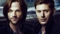 supernatural - Sam and Dean wallpaper