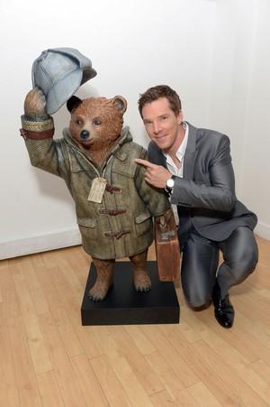 Sherlock Paddington menanggung, bear