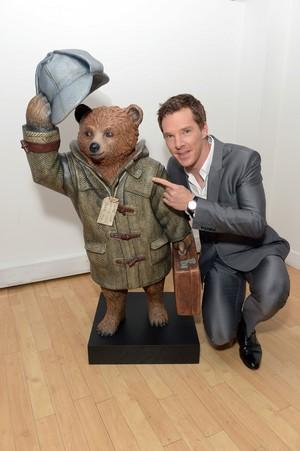 Sherlock Paddington 熊