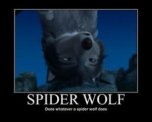 मकड़ी भेड़िया