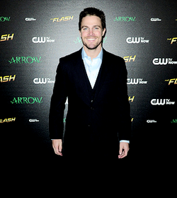 Stephen Amell and Emily Bett Rickards at The Flash vs. Arrow fan screening event.