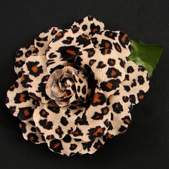 The Cheetah Rose